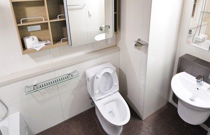 One Piece Vs Two Piece Toilet