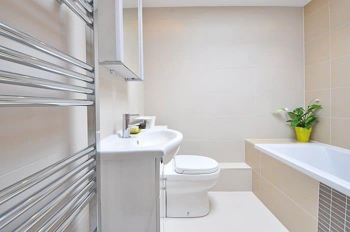 Best Toilet For Flushing Large Waste